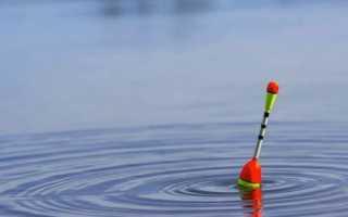 Скользящий поплавок для дальнего заброса: монтаж и оснастка удочки