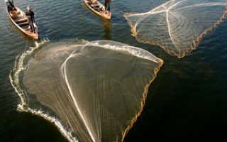 Как выбрать кастинговую сеть для рыбалки