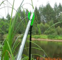 Тонкости фидерной ловли на течении