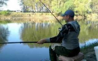 Ловля карася на реке: снасти, время, место, наживка
