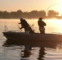 Русская рыбалка рыбные места, на карте, Дон, Волга, с берега, в диких местах. Русская рыбалка клёвые места, топ 10 лучших
