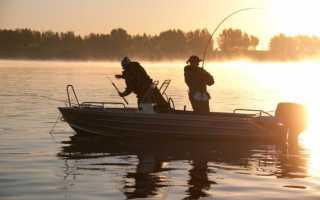 Рыбалка на реке волга — Здесь рыба