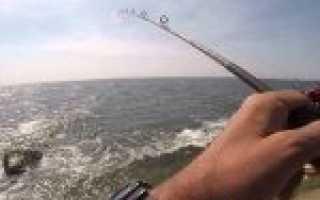 Ловля на джиг с берега для начинающих