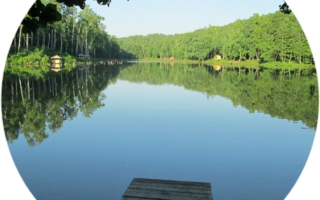 Платная рыбалка — рыболовный парк Лагуна