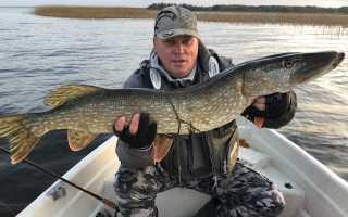 Рыбалка в Финляндии — особенности, правила, лицензия, озерная и речная рыбалка в Финляндии