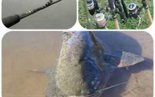 Ловля сома на спиннинг — читайте на Сatcher.fish