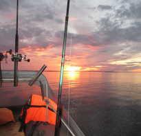 Мои лучшие воблеры для ловли судака на Финском заливе