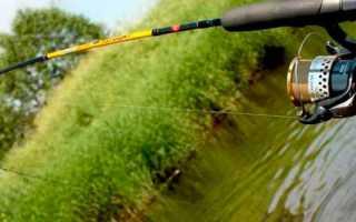 Как ловить на спиннинг? Рыбалка на спиннинг