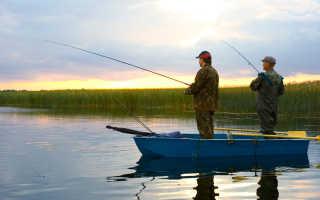 Рыбалка в кашарском районе
