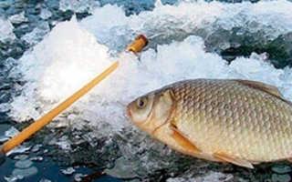 Ловля карася зимой на мормышку со льда видео