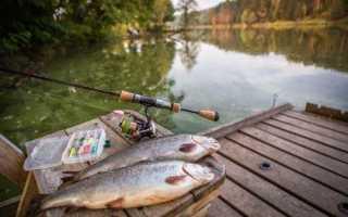 Рыбалка в удачном астраханской области