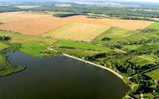 Рыбалка в рыбхозе Межура Калужской области