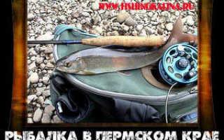 Рыбалка в Пермском крае — ловля хариуса нахлыстом