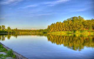 Рыбалка в Подмосковье на реках и платных озерах, отчеты о рыбалке