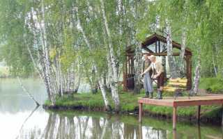 Рыбхоз Раково. Платная рыбалка в Подмосковье