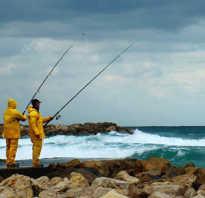 При каком ветре лучше клюет рыба летом влияние его направления на рыбалку