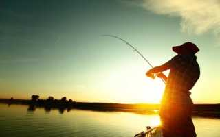 Рыбалка в домодедово платная