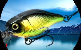 Проводка на щуку — способы проводки при ловле щуки