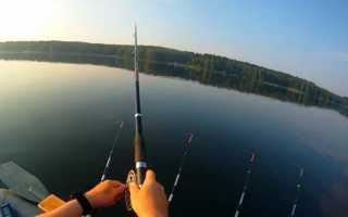 Ловля рыбы с лодки бортовыми удочками