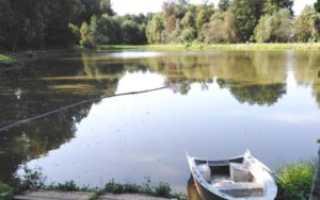 Рыбалка в Чеховском районе Московской области