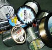 Леска для рыбалки: как выбрать. Рыболовные снасти