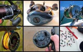 Катушка для рыбалки: виды и типы катушек