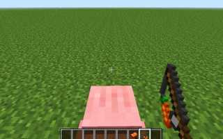 Как сделать в майнкрафте удочку с морковкой. Майнкрафт: удочка с морковкой для управления свинки