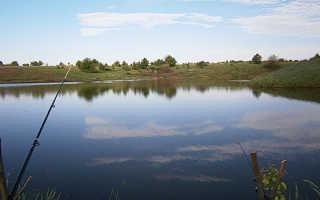 Платная рыбалка в Воронежской области, в Семилукском районе: пруды и проживание