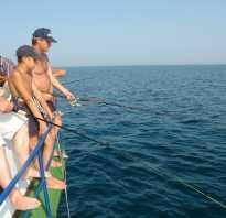 Рыбалка в Судаке — цены на отдых в Крыму 2018