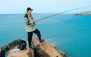 Рыбалка в сочи на море с берега — Ловись рыбка
