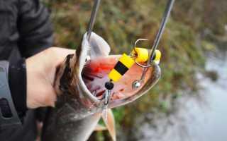 Ловля на мандулу судака, щуки, видео, рыбалка летом и как сделать приманку для рыбы{q}