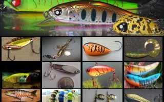 Приманки для спиннинга: виды и типы