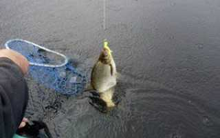 Ловля крупного леща на поплавочную удочку с лодки на течении и в озере