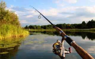 Рыбалка в Тульской области на реках, озерах, платных водоемах