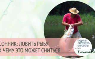 Сонник ловить рыбу к чему снится ловить рыбу во сне