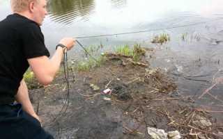 Рыболовная дорожка на резинке как ловить — Здесь рыба