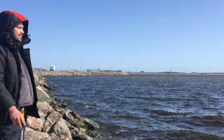 Рыбалка на дамбе Финского залива