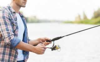 Рыбалка в Финском заливе — летом скучать не придется!