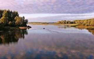 Рыбалка на Можайском водохранилище и описание водоема