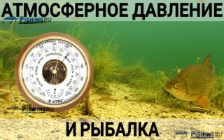 Какое нормальное давление для ловли рыбы — Здесь рыба