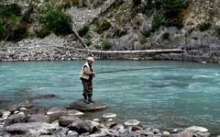 Рыбалка в Абхазии — стоит попробовать.