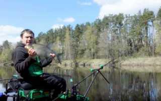 Ловля на фидер весной на реке и на пруду. Какой фидер выбрать для ловли на течении?