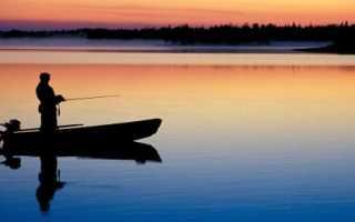 Платная и бесплатная рыбалка на Новой Риге