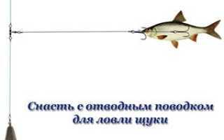 Ловля щуки на отводной поводок и монтаж московской оснастки