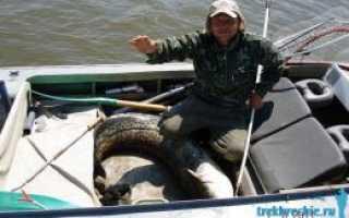 Набор инструментов для рыболовных снастей как использовать