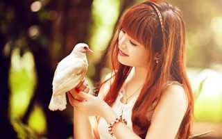 Поймать птицу во сне руками сонник