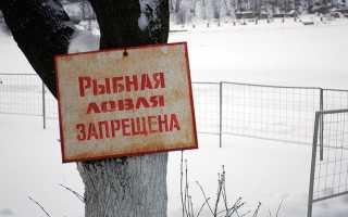 Запрет на рыбалку в РФ 2018 – основные сведения