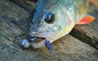 Ловля окуня на джиг — читайте на Сatcher.fish