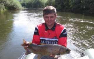 Ловля ленка — особенности рыбалки