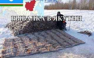 Рыбалка в Якутии: рыбные места